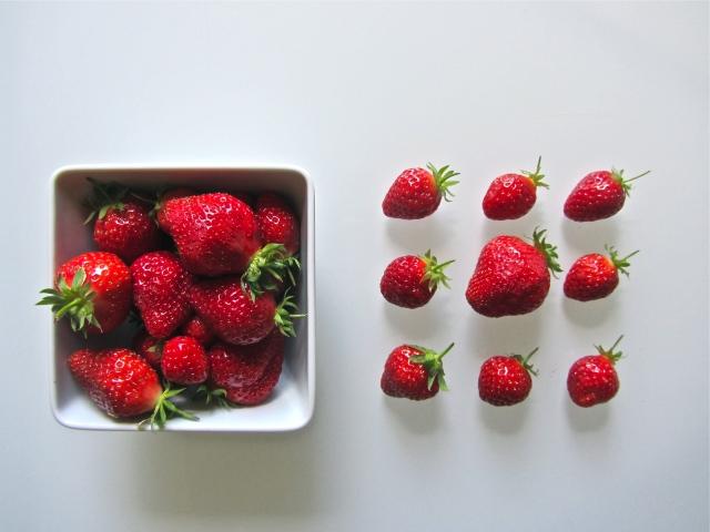 Fraisier, présentation fraises